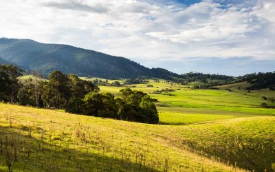 Yarra Valley Wedding Venues – How To Separate The Ordinary From The Exceptional